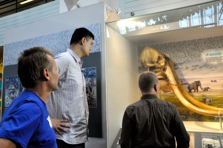 Yao Ming at London's Natural History Museum