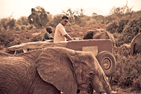Yao Ming Surrounded by a Herd of African Elephants in Samburu Reserve