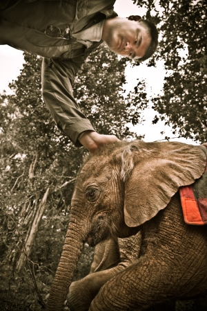 Yao Ming with Kinango, an Orphaned Elephant at Daphne Sheldrick Orphanage