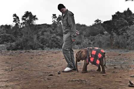 Yao Ming with Kinango, an Orphaned Elephant at Daphne Sheldrick's Orphanage
