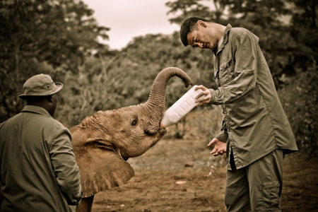Yao Ming Feeding an Orphan Elephant at Daphne Sheldrick Orphanage