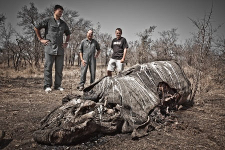 Yao Ming Encounters Body of Poached Black Rhino